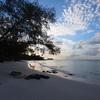 リゾート開発が進むロン島。住民の生活が豊かになるには?