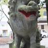 笛吹市石和町小石和 諏訪神社の甲斐狛犬