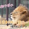 【レポ#21】平日昼間の千葉市動物公園現地レポート(2021/3/4)【後編】