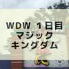 WDW1日目 マジックキングダム