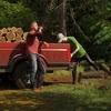森林管理シム『Forester Simulator』 森を守り野生動物達と触れ合うオープンワールド