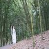 上海植物園の竹林で撮影会「天山童姥」奇麗な写真と味のある写真