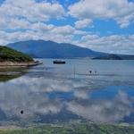 「ロトマハナ湖(Lake Rotomahana)」~「ワイマング火山渓谷(Waimangu volcanic valley)」帰りはバスで。。。
