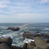 江ノ島の海に真っ赤な帯が発生!