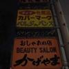 夜の高知市散歩/高知県