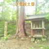 【狂犬通信 Vol.111】甲斐國都留郡・小菅城