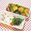 眠りのクマ弁当/My Homemade Lunchbox/ข้าวกล่องเบนโตะที่ทำเอง