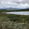 カナダ〜アラスカ旅 172,173日目 デナリバックカントリー