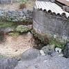 カミナリ井戸