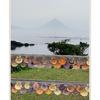 春の花旅④ 鹿児島編『番所鼻自然公園』