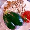 ホットクックレシピ23回目ナス、しめじのトマト煮