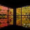 11月の京都・奈良旅行 3泊4日 4日め
