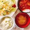 グリンピースごはんとハンバーグトマト煮込み+ガイスターレビュー☆