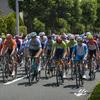 自転車競技(男子ロードレース)