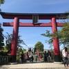 亀戸天神の藤の花 浅草観光センター展望テラス 駒形 練馬美術館