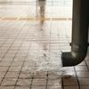 学び舎に歌声沁みて梅雨出水(あ)