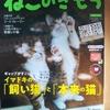 ねこのきもち5月号が届きました~可愛い猫のシール付きだけどこれは誰得なのか?笑