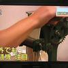 9/4(水)のNHK首都圏ニュースで家庭用製麺機情報が出るとか