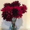 部屋に花を飾るのは、心に余裕のある証拠。余裕がないので色々置いてみた。