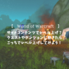 【World of Warcraft】レベル上げに飽きたときにできるサイドコンテンツでのレベル上げ