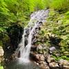布滝【津山市阿波】「布滝」と書いて「のんたき」と読む!白い布をさらしているように見える滝はとてもきれいでした。