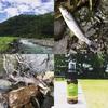 テンカラトリップ釣行記:2017年7月中旬の新潟県の頸城山塊源流域、「ツ抜け」の別天地