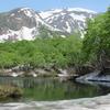 残雪と新緑の鶴間池Ⅱ