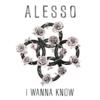 Alesso - I Wanna Know ft. Nico & Vinz 歌詞 和訳