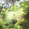 【香川県の直島に1泊2日ひとり旅・9】モネの絵は分かりやすくて好き
