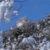 雪の金華山をX-T1 XF18-135mmで撮る