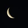 曙のお月さま。
