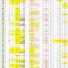 新型コロナウイルス、都道府県別、週間対比・感染被害一覧表 (5月21日現在)