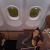 エティハド航空889便 ビジネスクラス 中部‐北京 搭乗記 EY889 Business Class NGO-PEK A330-200 2014 Dec