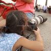 僕の娘はカメラマン