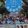 3分でわかるマラソン大会前日 ~第三回練馬こぶしハーフマラソン2017~