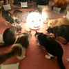 第86回 猫カフェ貸切もふもふ人狼ゲーム会vol.14&カタン会vol.8レポート
