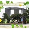シンガポール旅行記2019 ♪ガーデンズバイザベイからマリーナベイサンズへ!