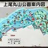 上尾丸山公園 何気に何でもある超優秀な公園!これで無料とか・・すごすぎる!子連れには天国。