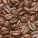 Indoの素敵なコーヒーライフ