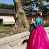 """女子旅で韓国選んだら、体験してほしい韓国衣装の""""チマチョゴリ""""でフォトツアー!"""