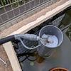 庭池DIY(庭池の自作ろ過装置をマイナーチェンジした話)