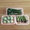 旬の味、そして夫との思い出の味。春野菜の天ぷら