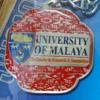 【留学】マラヤ大学のSEP(Summer Enrichment Programme)とは?学べる内容を紹介!
