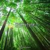 kaguyadepth 1st EP『Chikkutune 竹製楽器×チップチューン』について
