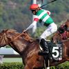 2018年クイーンエリザベスⅡ世カップ アルアイン、ダンビュライトの日本馬2頭が出走 |更新9/19 香港馬パキスタンスターが先行策からG1初制覇