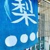 東日本駅伝