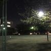 西品川公園 東京都品川区西品川1-8