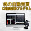 株式投資自動売買プログラム『株の自動売買 ~12週間習得プログラム~』レビューサイト