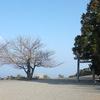 まるで天空の神社?朝熊山の山頂にある八大竜王社 - 朝熊山の旅(4)