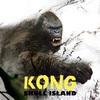 「キングコング髑髏島の巨神」感想 映像100点!興奮度100点!ラスト0点!